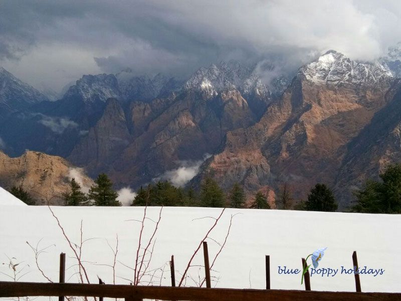 Blue Poppy Resorts Auli - View from the Resort