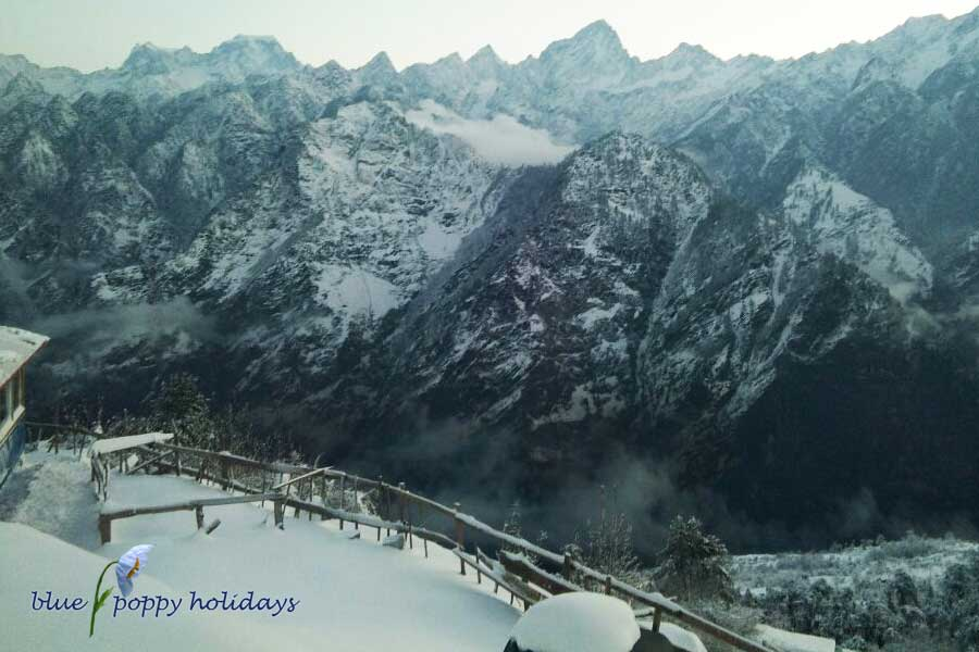 View from Blue poppy resorts Auli